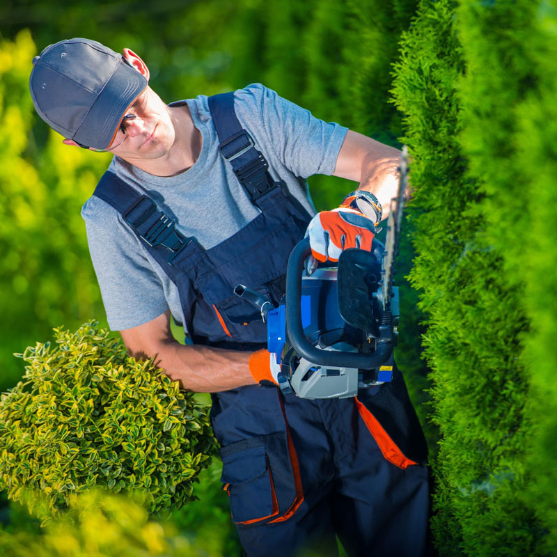 Landscaping Services in Dallas, GA
